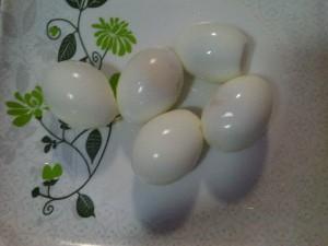 scotch egg (7)