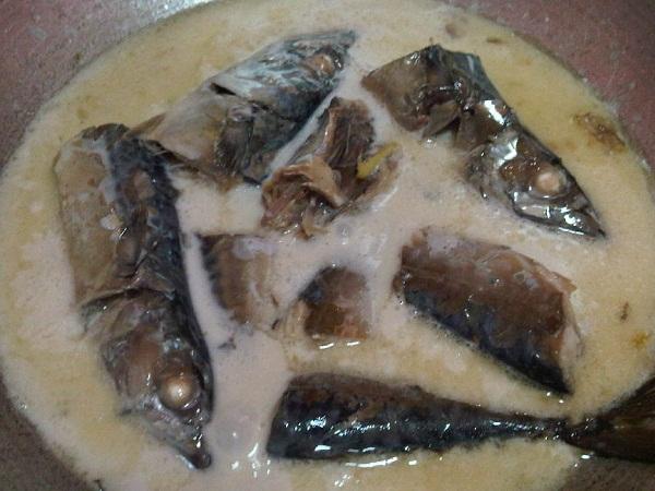 salmon in coconut milk (10)