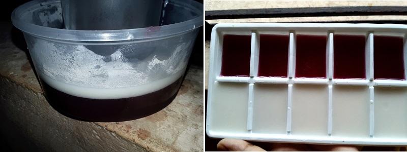 greape coconut milk pudding 7