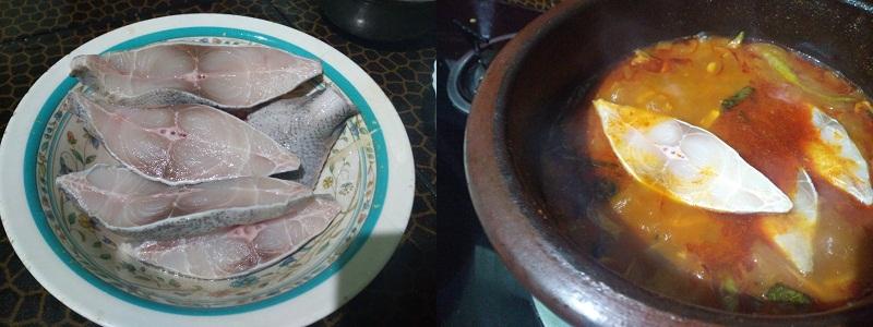 fish cury stup4